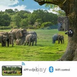 Wifi Wlan 24mp 830 Wildkamera Bluetooth Überwachungskamera Fotofalle Jagdkamera